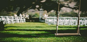 Wedding Swing 2.png
