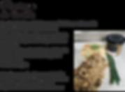 Filet_de_poulet_oignons_confits_sésame_