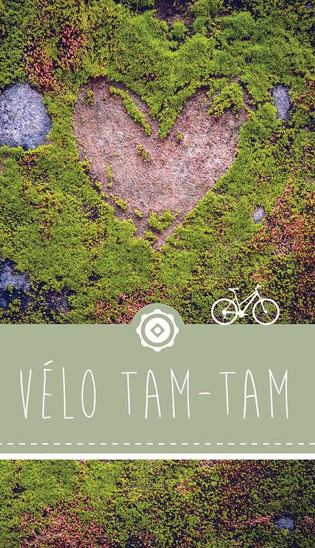 TAM-TAM_choix\velo_tam-tam_3.jpg
