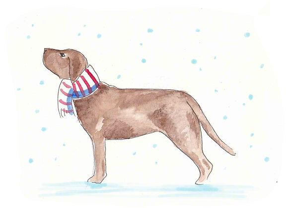 Chocolate Labrador Christmas Cards set of 6