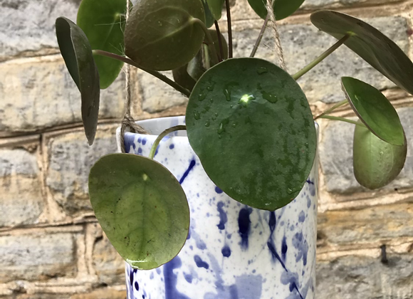 Blue Splatterware Hanging planter