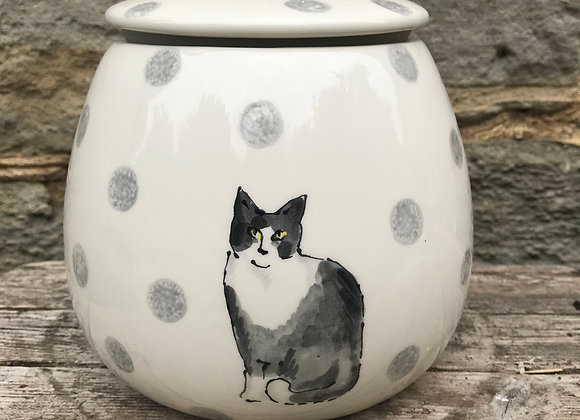 Dotty Cats Storage Cannister