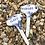 Thumbnail: Plant Labels small