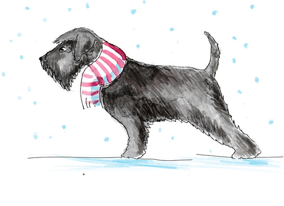 Black Schnauzer Christmas Cards set of 6