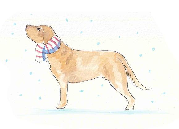 Labrador Christmas Cards set of 6