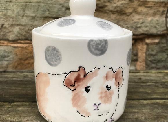 Dotty Guinea Pig Sugar Pot