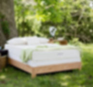 Cape Cod high quality mattress store latex mattresses
