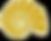 Bilek Shell Logo