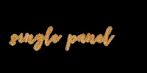 singlepanel.png