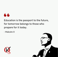 4. Malcolm X Quote.png