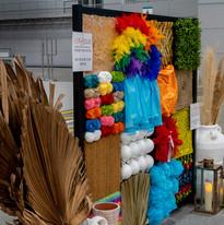 NDIS Expo Stall