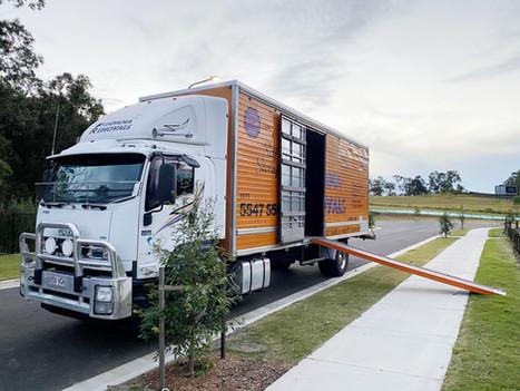 NPR truck 3.jpg
