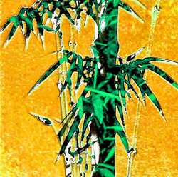 BAMBOOS AND GOLD