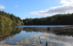 Aigas Loch