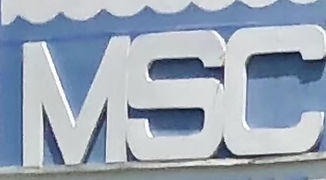 MSC 2020: What to expect