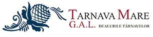 Gal Dealurile Tarnavelor Logo.jpg