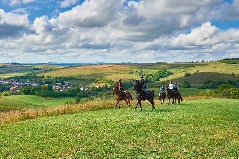 Equestrian 2.jpg
