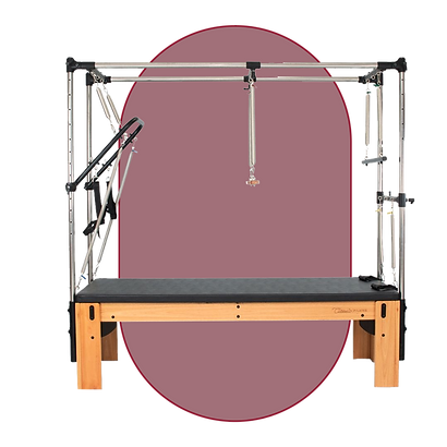Pilates Clássico Fisioterapia.png