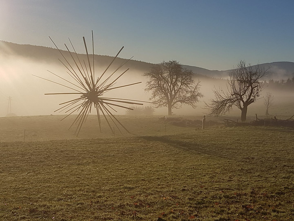 Heute früh fotografiert von Saskja Seidl (Gut Gasteil)