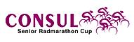 Consul Logo 2018 2.png
