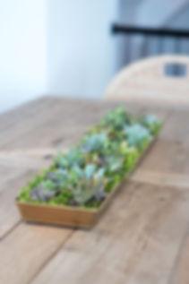 Custom succulent planter