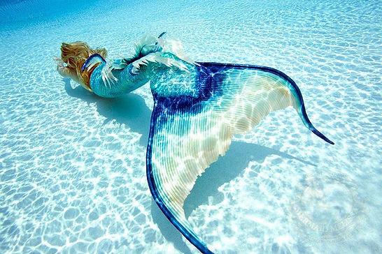 the mermaid lifestyle[230584300921373074
