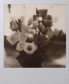 Polaroid_22.jpg