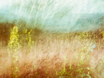 Field Abstract I.jpg