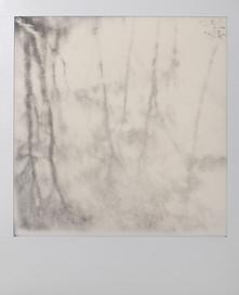 Polaroid_03.jpg