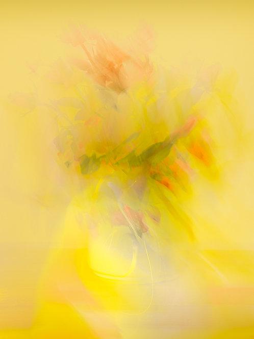 'Vaso di Fiori' - on Fotospeed Cotton Etching 305g Signature paper