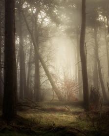 Enchantment_16.jpg