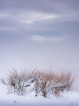 Winterland_11.jpg