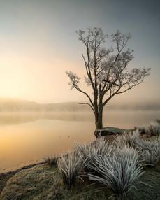 Winterland_34.jpg