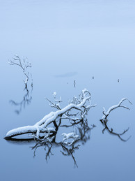 Winterland_16.jpg