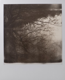 Polaroid_30.jpg