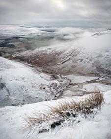Winterland_39.jpg