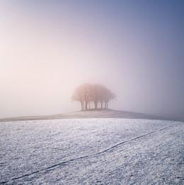Winterland_09.jpg