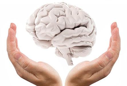 The-Hand-As-A-Brain-s.jpg