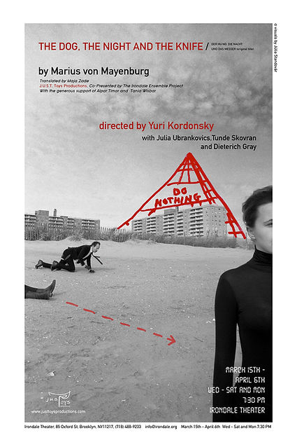 dnk.poster1.jpg
