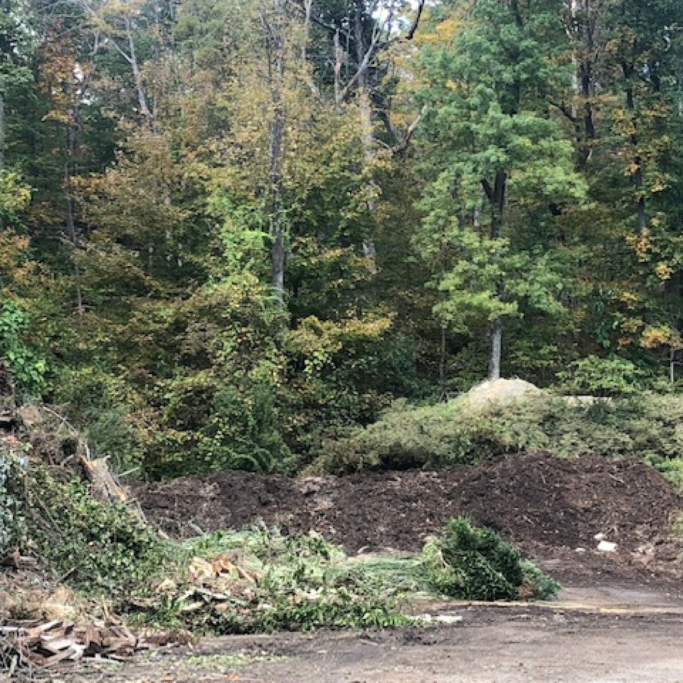 Vegetative waste converted into natural mulch