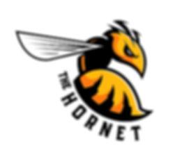 the hornet eye.jpg