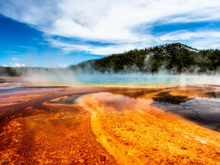 Yellowstone National Park Destination Guide
