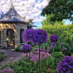 Boise, Idaho Visitor Guide - the best attractions, restaurants and accommodations!