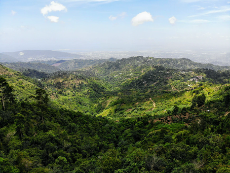 Road Trip Through the Heart of Jamaica's Backcountry