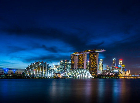Singapore Visitor's Guide