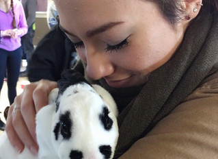 An interview with a Catholic millennial on faith and animal protection