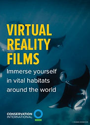 virtualreality-sock.jpg