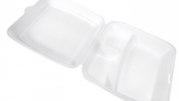 FST5-A Foam Hinger Container