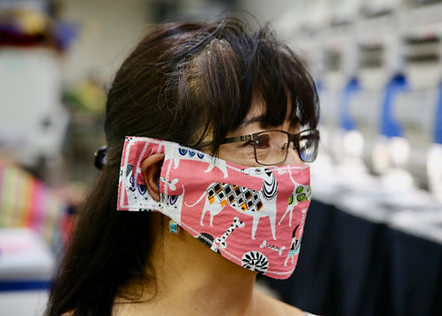 Fun Pack Face Masks