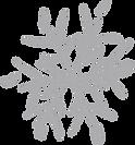 Snowflake%20%20%20%20_edited.png